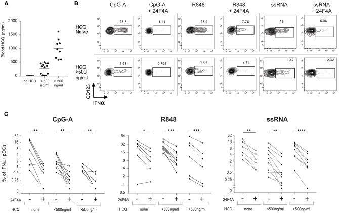 24F4A further reduces pDC IFNα production after CpG-A, R848 or ssRNA stimulations of PBMC isolated from CLE patients regardless blood HCQ levels. (A) Concentrations of HCQ in whole blood from the CLE patient cohort studied ( n = 30). (B) Representative dot plots of IFNα+ cells within a BDCA4+ and CD123+ gate after CpG-A, R848 or ssRNA stimulation with or without pre-treatment with 24F4A (10 μg/ml 30 min) from CLE patient without detectable blood HCQ (top panel) or a CLE patient with a blood HCQ concentration of more than 500ng/ml (bottom panel). (C) Effect of 24F4A on the percentage of IFNα-producing pDCs induced by CpG-A, R848 and ssRNA stimulations and detected by flow cytometry in PBMC from CLE patients without detectable level of blood HCQ ( n ≥ 6 donors), with blood HCQ concentrations lower than 500 ng/ml ( n ≥ 8 donors) or > 500ng/ml ( n ≥ 6 donors). Statistical significance was assessed with a two-tailed paired Student's t-test using log2-transformed values (* p