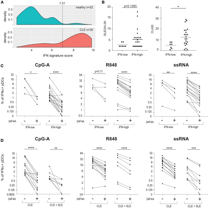 24F4A further reduces pDC IFNα production after CpG-A, R848 or ssRNA stimulations of PBMC isolated from CLE patients with blood IFN-high signature or concomitant SLE diagnostic. (A) Distribution of the blood IFN signature scores in healthy individuals ( n = 52) and CLE patients ( n = 30). (B) Comparison of SLEDAI2-K disease scores (left) or CLASI skin scores (right) between CLE patients with blood IFN-low and blood IFN-high signature scores. Statistical significance was assessed using Mann-Whitney test (* p