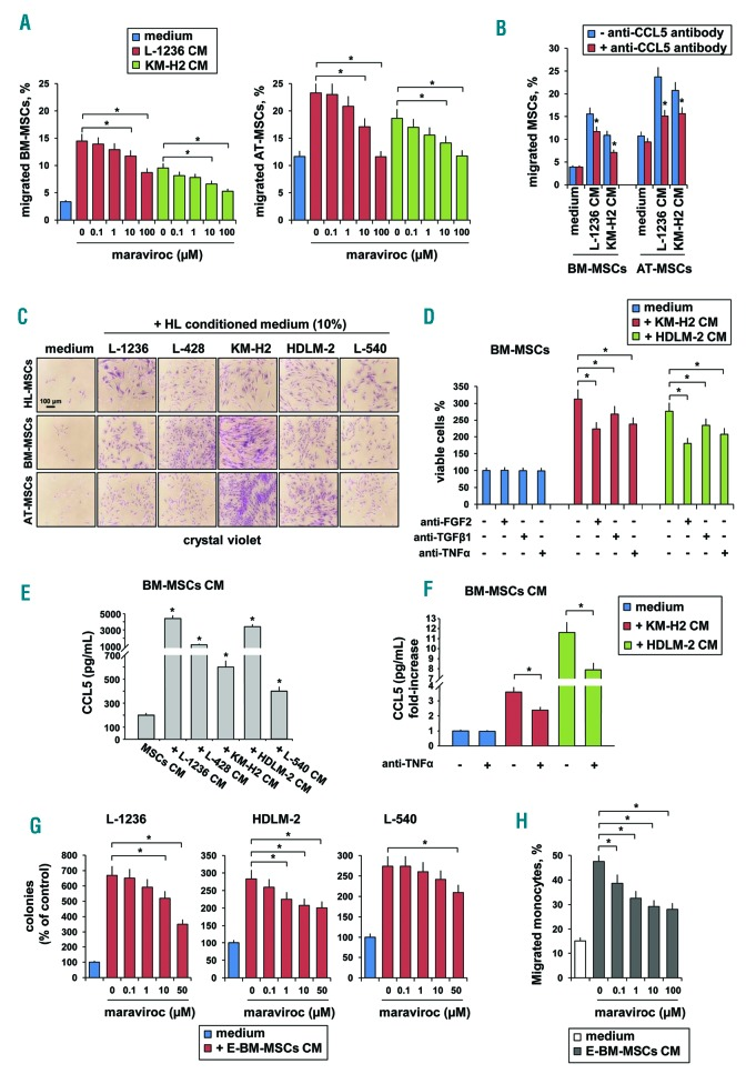Maraviroc inhibits crosstalk between cHL cells and both MSCs and monocytes. (A) Percentages of BM-MSCs and AT-MSCs that migrated (in 5 h) through a fibronectin-coated Boyden chamber towards conditioned medium (CM) from L-1236 or KM-H2 cells, in the presence of increasing concentrations of maraviroc (MSCs were treated for 1 h prior to migration). (B) Effect of a neutralizing anti-CCL5 antibody (5 μg/mL) in cHL-conditioned medium on MSC migration. Transmigrated cells were revealed using a computer-interfaced GeniusPlus microplate reader (Tecan). Results are the mean and SD of three replicate wells from three independent experiments. (C) BM-MSCs, AT-MSCs and HL-MSCs (100 cells/well; 24-well plates) were cultured in <t>RPMI-1640</t> medium containing 10% cHL CM. After 9 days, cells were fixed with methanol and stained with crystal violet. (D) BM-MSCs (500 cells/well; 96-well plates) were cultured in RPMI-1640 medium containing 20% cHL CM, with or without a neutralizing anti-FGF2 (1 μg/ml), anti-TGFβ1 (2 μg/mL) or anti-TNFα (0.5 μg/mL) antibody. After 9 days, growth was evaluated using the MTT assay. Results are the mean and SD of three replicate wells from three independent experiments. (E) BM-MSCs were cultured for 6 days with 20% CM from L-1236, L-428, KM-H2, HDLM-2, and L-540 cells. Then, the medium was changed with fresh medium, and 3 days later MSC CM was recovered and quantified for CCL5 by ELISA. All samples were tested in triplicate; conditioned media from three different experiments were evaluated. (F) BM-MSCs were cultured for 6 days with 20% CM (from KM-H2 or HDLM-2 cells) in the presence or absence of a neutralizing anti-TNFα antibody (0.5 μg/mL). Then, the medium was changed and after 3 days CCL5 was quantified by ELISA. All samples were run in triplicate; conditioned media from three different experiments were evaluated. (G) Clonogenic growth. L-1236 (10 3 /mL), HDLM-2 (5 × 10 2 /mL), L-540 (2.5 × 10 2 /mL) cells were cultured in methylcellulose-containing