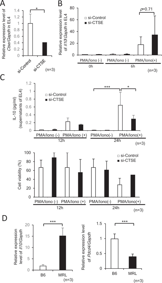 Expression of Il10 in EL4 cells transfected with siRNA for Ctse and CD4+ T cells isolated from B6 and MRL mice. ( A ) The knockdown and mRNA expression of Ctse in EL4 cells transfected with 5 μM control siRNA (si-Control) or Ctse siRNA (si-CTSE). *p