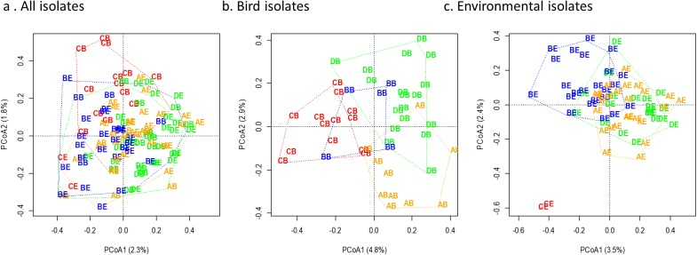 Genomic diversity of Escherichia coli by site and isolate source. Genomic diversity of Escherichia coli at a residential control and three cattle farm sites in central Illinois by site for both sources (A), from just bird feces (B), and from just environmental swabs (C). Sample points are labelled by site and source and colored by site. The first letter indicates source: D, Dairy (green); A, Beef A (orange); B, Beef B (blue), and C, Control (red). The second letter indicates sample source: B, bird feces or swab; E, environmental swab.