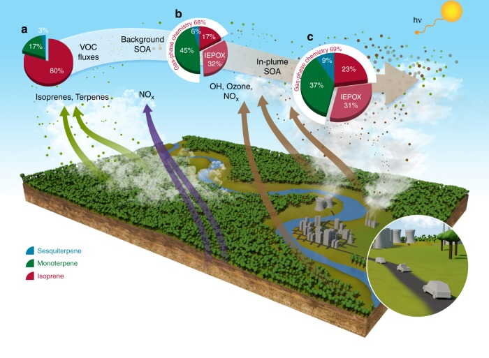 Schematic illustrating how NO x emissions from Manaus greatly enhance formation of biogenic SOA within the urban plume. NO x emitted by Manaus greatly increases oxidants (OH and ozone; brown arrows), which promote reaction of forest carbon (emitted as isoprene and terpenes; green arrows). In the absence of the urban plume, background soil NO x emissions (purple arrows) drive the oxidant cycling but are much smaller than the NO x emitted from Manaus. Lower background NO x causes smaller OH and ozone production, thus decreasing reacted biogenic <t>VOCs</t> and SOA formation. The pie charts indicate WRF-Chem simulated domain-averaged components of a Mass emissions fluxes of biogenic VOCs, b Background biogenic SOA and c In-plume biogenic SOA at 500 m altitude during the afternoon (16–20 UTC) of 13 March 2014. Biogenic SOA consists of two parts: gas-phase chemistry of isoprene, monoterpenes, and sesquiterpenes represented by <t>VBS</t> approach (~70% of total SOA), and multiphase chemistry that is driven by IEPOX uptake into SOA, as described in the text