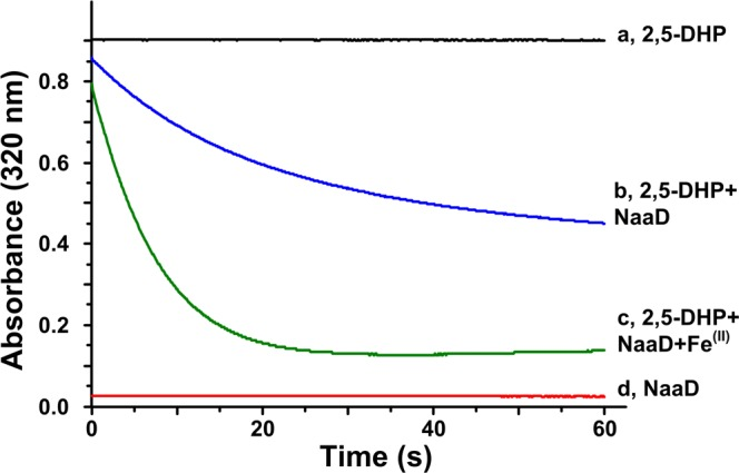 Characterization of NaaD. The enzyme activity was measured according to the absorbance decrease at 320 nm. The reaction mixture contain NaaD, 250 μM <t>2,5-DHP,</t> and 5 μM FeSO 4 . ( a ) Negative control, 2,5-DHP; ( b ) reaction of NaaD (NaaD + 2,5-DHP); ( c ) reaction of NaaD (NaaD + 2,5-DHP + Fe 2+ ); ( d ) negative control, NaaD.