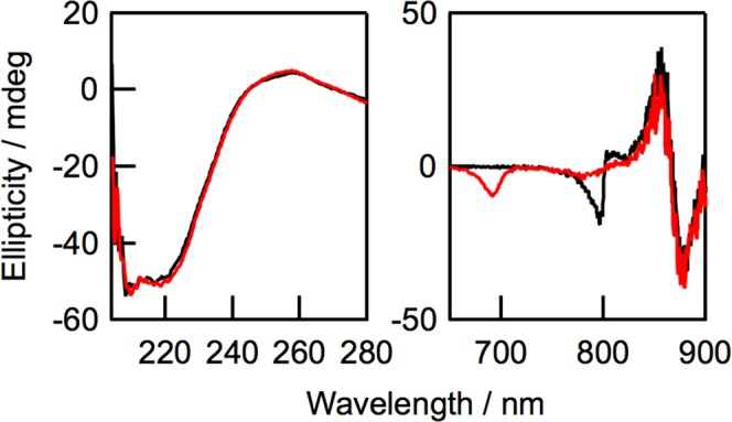 CD spectra of native LH2 (black) and oxidized LH2 (red) in UV (left) and Q y regions (right) in 20 mM Tris-HCl buffer containing 0.1% n- dodecyl- β -D-maltoside (pH = 8.0). Q y absorbance values of B850 BChl a in LH2 samples used for measurements were 0.9.