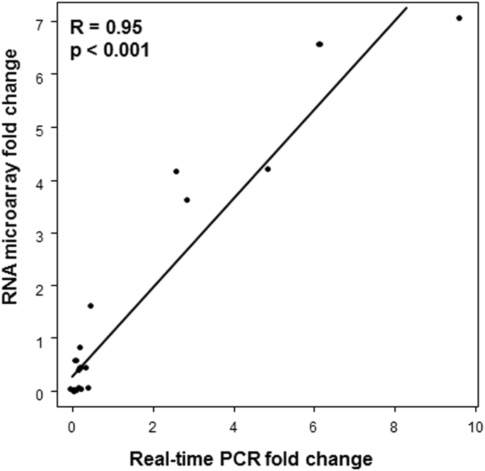 Real-time PCR confirmation of a subset of differentially regulated genes identified in the RNA microarray analysis. Correlation plot of osteoblast marker genes in the RNA microarray dataset and real-time PCR validation. A high correlation was observed between the two methods.