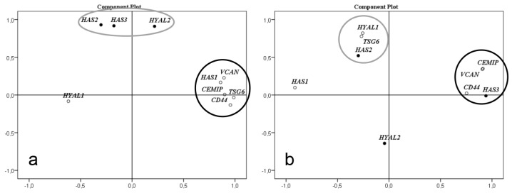 Factor analysis for correlation of gene expression levels. <t>HAS1-3</t> , HYAL1-2 , CEMIP , CD44 , VCAN , and TSG6 in non-failing left wall and septum (n = 9) ( a ) and HCM myectomies (n = 5) ( b ). ( a ) In left wall and septum there are two clusters where HAS1 , CEMIP , CD44 , VCAN , and TSG6 form one cluster, and HAS2 , HAS3, and HYAL2 form another. ( b ) In basal septal myectomies from HCM patients the expression levels of CEMIP , CD44, and VCAN formed a new correlation cluster with HAS3 . HAS2 , HYAL1 , and TSG6 formed another cluster. The levels of HAS1 and HYAL2 no longer correlated with any of the other genes investigated. Factor analysis was performed with the principal components method to analyze the correlation matrix and two factors were extracted.