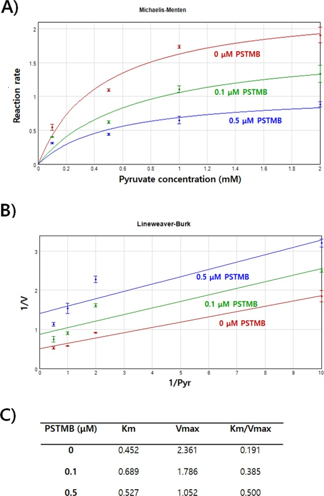 PSTMB inhibits LDHA activity in Michaelis-Menten and Lineweaver-Burk plots. To check LDHA enzyme kinetics, purified recombinant human LDHA protein (10 ng) were incubated in buffer containing 20 mM of HEPES-K + (pH 7.2), 30 μM of NADH with 0, 0.1, 0.5, 1 and 2 mM of pyruvate in the presence or absence of PSTMB (0, 0.1, 0.5 μM). for 10 min. The fluorescence of NADH was examined at wavelength of excitation at 340 nm and emission at 460 nm with spectrofluorometer. Michaelis-Menten curves ( A ) and Lineweaver-Burk plots ( B ) are shown to determine the inhibition mode of PSTMB. The values are averages of three separate experiments. The results are plotted as means ± SD.