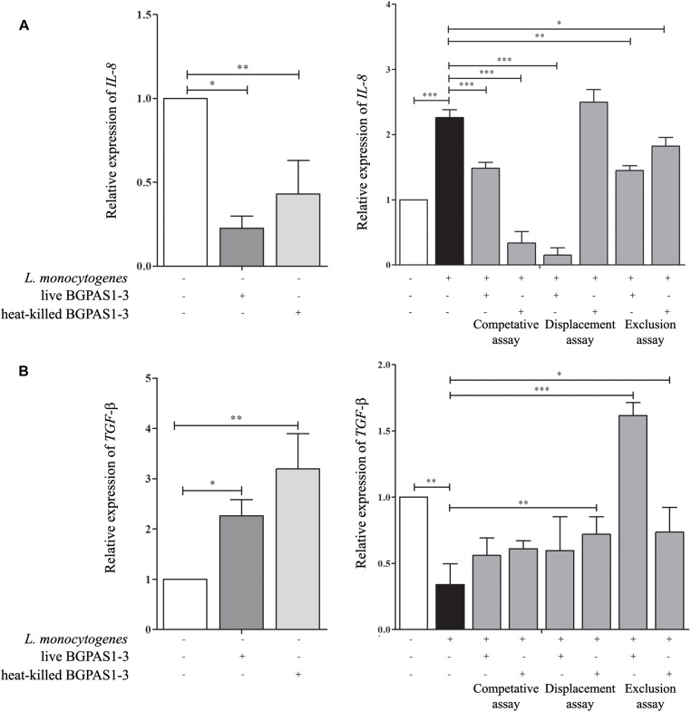 The effect of Listeria monocytogenes ATCC 19111, live and heat-killed Enterococcus faecium BGPAS1-3 on (A) IL-8 and (B) TGF -β mRNA expression by differentiated Caco-2 cells was analyzed in the competitive, the displacement and the exclusion assays. Three experiments were done. One-way ANOVA with the Tukey's post hoc test was used to compare the expression of mRNA for IL-8 and TGF -β (relative to β- actin as housekeeping gene) in untreated cultures with BGPAS1-3 treated and L. monocytogenes ATCC 19111 treated cultures, as well as in L. monocytogenes ATCC 19111 treated cultures with BGPAS1-3/ L. monocytogenes ATCC 19111 treated cultures. Statistical significance p
