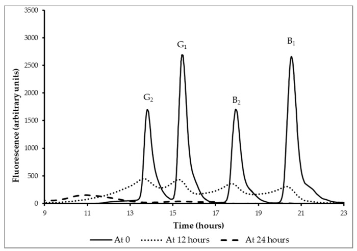 Reduction of aflatoxins B 1 , B 2 , G 1 , and G 2 during controlled fermentation of the traditional maize-based kwete. HPLC chromatograms (fluorescence at 450 nm (arbitrary units) as a function of time (hours)) of <t>immunoaffinity-purified</t> water-soluble fractions of kwete after 0, 12, and 24 h of fermentation.
