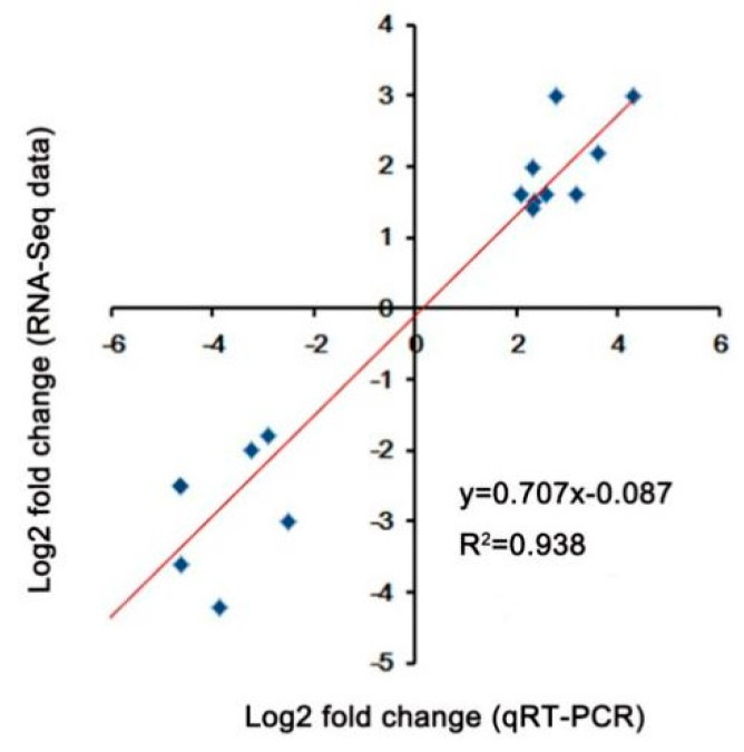Validation of DEGs under heat stress. Correlation between the fold change analyzed by RNA-seq ( y -axis) and data obtained using qRT-PCR ( x -axis).