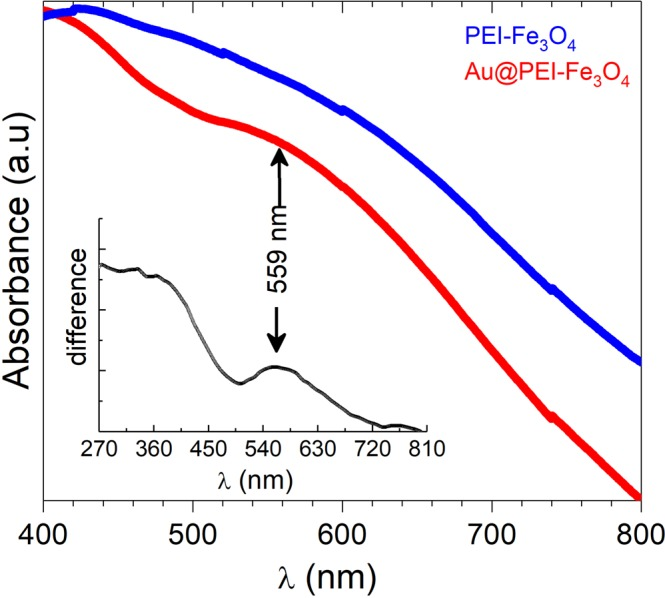 <t>UV-vis</t> <t>spectra</t> of PEI-Fe 3 O 4 NPs (blue line) and Au@PEI-Fe 3 O 4 NPs (red line). The inset shows the difference between the two curves and the peak at λ = 559 nm from the Au NPs.