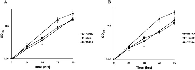 Growth curve profiles of M. tuberculosis overexpressing Rv1222. Bacteria were grown in 7H9 ADC at 37 °C in rolling bottles; OD 540 was recorded at regular intervals up to 96 hrs. Results represent the average of three independent experiments.