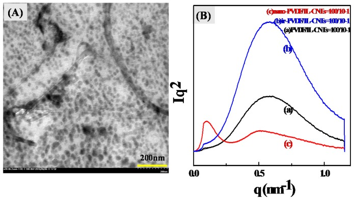 ( A ) TEM image of nano-PVDF/IL-CNTs (100/10-1) and ( B ) Small-angle X-ray scattering (SAXS) patterns of PVDF/IL-CNTs (100/10-1), irradiated-PVDF/IL-CNTs (100/10-1) and nano-PVDF/IL-CNTs (100/10-1) samples.