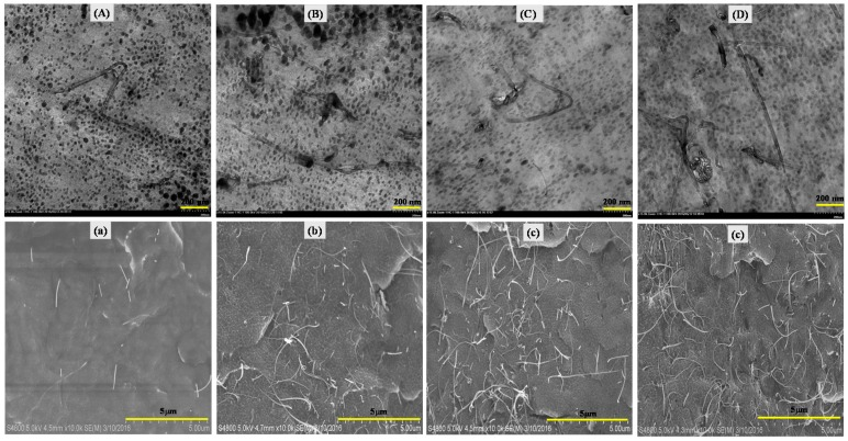 TEM and SEM images of nano-PVDF/IL-CNTs samples with various content of CNTs: ( A ) and ( a ): 100/10-0.1; ( B ) and ( b ): 100/10-0.5; ( C ) and ( c ): 100/10-1; ( D ) and ( d ) 100/10-2, respectively.