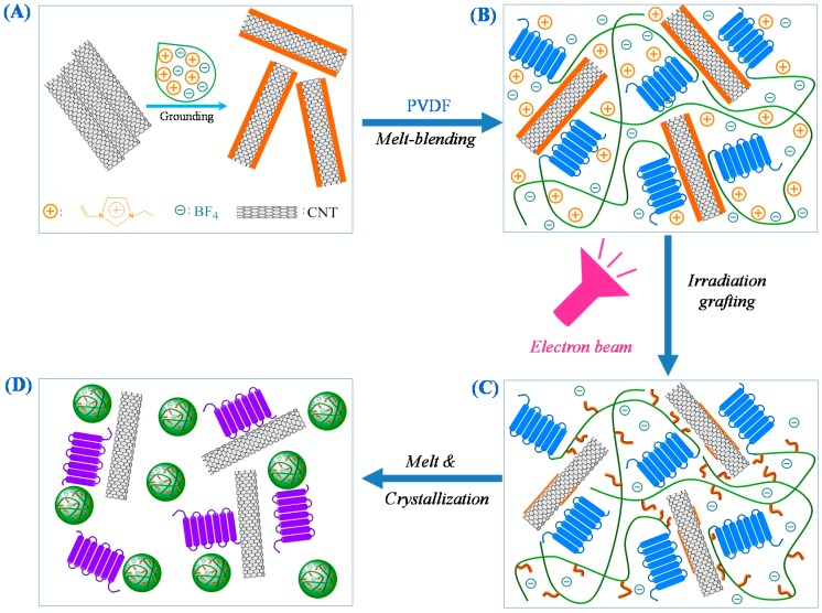 Schematic diagrams for the formation of ionic nanoclusters and CNTs structures in nano-PVDF/IL-CNTs composites. ( A ) First grounding of CNTs with IL resulted in IL-layer-coated CNTs; ( B ) melt-blending PVDF with such IL-layer-coated CNTs fabricated PVDF/IL-CNTs nanocomposites with homogeneously dispersed CNTs; ( C ) The PVDF/IL-CNTs nanocomposites then exposed upon electron beam irradiated (EBI) at room temperature in the air, whereas IL molecules in-suit grafted onto chains of PVDF; ( D ) the as-irradiated PVDF/IL-CNTs samples were heated to 210 °C and held there for 30 min, and microphase separation of IL grafted PVDF (PVDF- g -IL) chains occurred in the melt. A following cooling procedure led to the nano-PVDF/IL-CNTs composites with PVDF- g -IL nanodomains (i.e., IL nanoclusters).