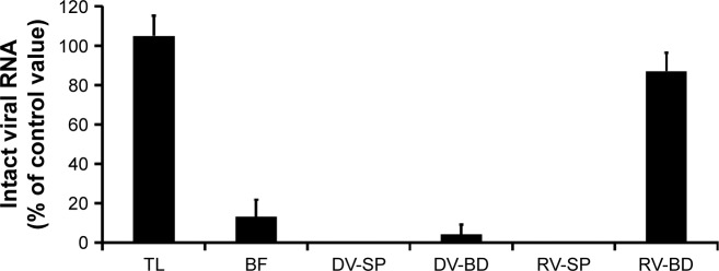 Quantitative analysis of the viral gene of rotavirus adsorbed onto the antibody-integrated MNBs. Notes: Rotavirus-infected cell lysate (10 µL) was diluted with PBS (500 µL) and then incubated with antibody-integrated magnetic beads. After incubation, the following fractions were obtained: 1) diluted rotavirus sample before incubation with the beads (BF), 2) bead fraction after incubation with anti-rotavirus antibody-integrated MNBs (RV-BD), 3) bead fraction after incubation with anti-dengue virus antibody-integrated MNBs (DV-BD), 4) supernatant fraction after incubation with the anti-rotavirus antibody-integrated MNBs (RV-SP), 5) supernatant fraction after incubation with the anti-dengue virus antibody-integrated MNBs (DV-SP), and 6) total sample containing the same quantity of rotavirus as in 10 µL of rotavirus-infected cell lysate (total fraction, TL). Viral genomic RNA was subsequently extracted from the above fractions using a QIAamp Viral RNA mini kit and subjected to RT-reaction. The resultant cDNA was analyzed by real-time PCR using primers for the rotavirus VP7 gene as described in Materials and methods. The value of the TL sample was taken as 100%. Abbreviations: MNBs, magnetic nanobeads; RT, reverse transcription.