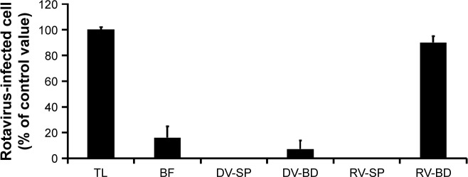 Infectivity in recovered rotavirus adsorbed onto the antibody-integrated MNBs. Notes: Rotavirus-infected cell lysate (10 µL) was diluted with PBS (500 µL) and then incubated with antibody-integrated MNBs. Fractions are as follows: 1) diluted rotavirus sample before incubation with the beads (BF), 2) bead fraction after incubation with anti-rotavirus antibody-integrated MNBs (RV-BD), 3) bead fraction after incubation with anti-dengue virus antibody-integrated MNBs (DV-BD), 4) supernatant fraction after incubation with the anti-rotavirus antibody-integrated MNBs (RV-SP), 5) supernatant fraction after incubation with the anti-dengue virus antibody-integrated MNBs (DV-SP), and 6) total sample containing the same quantity of rotavirus as in 10 µL of rotavirus-infected cell lysate (total fraction, TL). All fractions were subjected to an infection analysis using MA104 cells and IFA, as described in Figure S1. The number of rotavirus-infected cells was calculated as described in Materials and methods. Abbreviations: IFA, indirect fluorescent assay; MNBs, magnetic nanobeads.