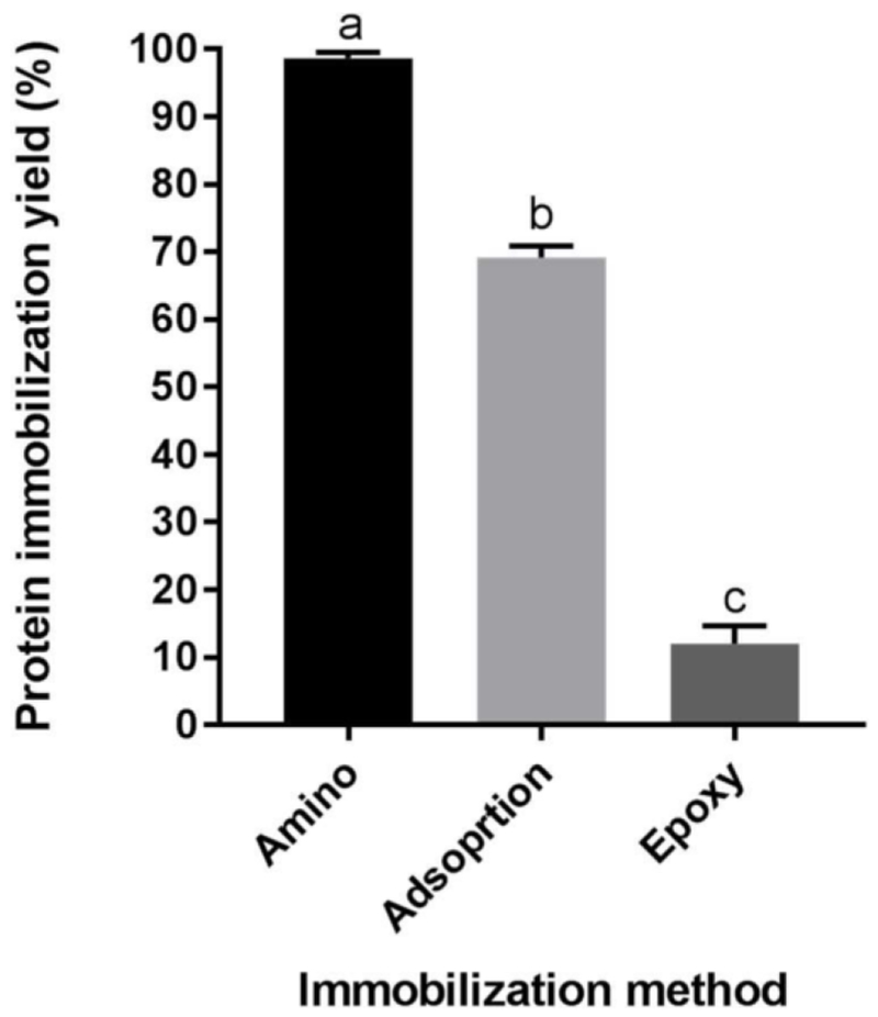 Protein immobilization yield for amino, adsorption, and epoxy immobilization methods, measured <t>fluorometrically</t> by <t>Qubit</t> Protein Assay Kit. Error bars represent one standard deviation and means followed by different letters (a, b, and c) are statistically different at p