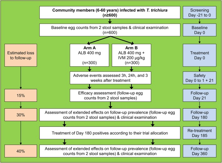 Design and timeline of the randomized controlled trial to be implemented in each of three settings. The study is designed as a two-armed trial including one arm with a single drug administration (arm A; albendazole) and one arm with combined treatment through co-administration of separate tablets (arm B; ivermectin and albendazole). The trial will be conducted as a multi-country study with two settings in Africa and one in Asia, namely Côte d'Ivoire, Pemba (Zanzibar, Tanzania) and Lao PDR