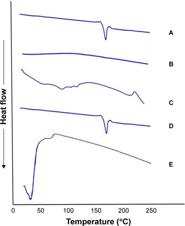 DSC thermogram of ( A ) OLM, ( B ) PC, ( C ) SDC, ( D ) physical mixture of OLM and transethosomal components, and ( E ) TE14. Abbreviations: DSC, differential scanning calorimetry; OLM, olmesartan medoxomil; PC, phospholipid; SDC, sodium deoxycholate; TE, transethosome.
