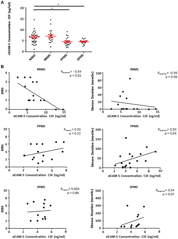 Patients suffering from progressive forms of MS show lower levels of sICAM-5 in CSF. (A) ICAM-5 concentration in ng/ml in the cerebrospinal fluid of NIND patients (NIND, n = 35), RRMS ( n = 17), PPMS ( n = 19), and SPMS ( n = 12) patients. Data shown are mean ± SEM. One-way ANOVA followed by Tukey's multiple comparison test, * p