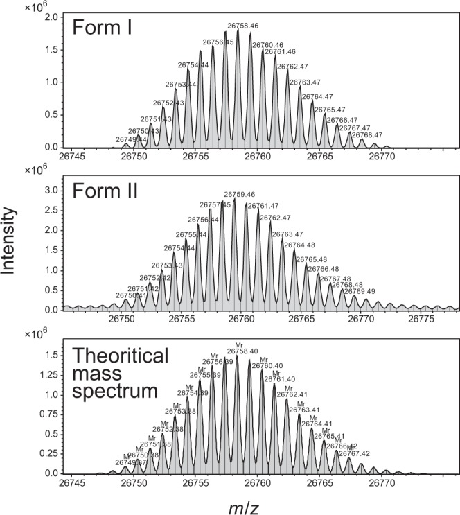 Mass spectra of intact form of <t>GFPuv</t> form I and form II. Mass spectra obtained by <t>ESI-MS</t> measurement for GFPuv form I ( top ) and form II ( middle ) were shown. The theoretical mass spectrum of GFPuv after the formation of the enol form of chromophore is shown ( bottom ).