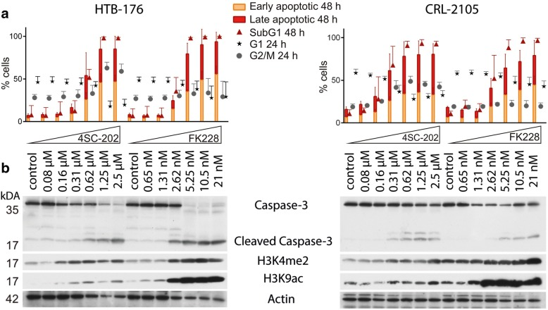 4SC-202 induces G2/M arrest and apoptosis in CTCL cell lines at concentrations hardly affecting acetylation and methylation of histone proteins. CRL-2105 and HTB-176 cells were treated with incremental doses of 4SC-202 or FK228. a After 24 and 48 h, cellular DNA content was analyzed by PI staining of fixed cells, and apoptosis was assessed by annexin V/7-AAD double staining. Early and late apoptotic cells were identified as 7-AAD − /Annexin V + and 7-AAD + /Annexin V + , respectively. Mean values (± standard deviation (SD)) of three independent experiments are depicted. b Total cell lysates harvested after 48 h of drug treatment were subjected to immunoblot analysis using antibodies recognizing the indicated targets (H3K4me2: histone H3 dimethyl lysine 4; H3K9ac: histone H3 acetyl lysine 9)