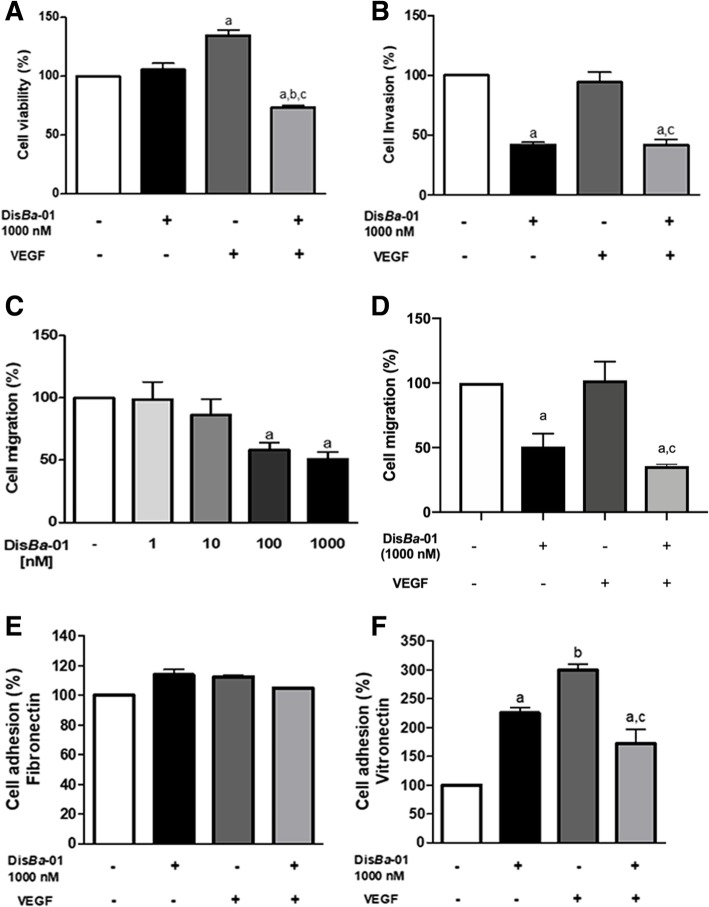Dis Ba -01 effects on VEGF-induced HUVEC viability, invasion, migration and adhesion. a Cells were treated with Dis Ba -01 (1000 nM), VEGF (10 ng/mL) or both proteins in DMEM supplemented with 0.5% FBS followed by 24 h of incubation. Cell viability was measured by spectrophotometry at 540 nm after incubation with MTT. b HUVECs (2 × 10 5 cells/well) were treated with 1000 nM Dis Ba -01 and/or VEGF (10 ng/mL) on serum-free DMEM for 30 min at 4 °C. Cells were pipetted into the Boyden's chamber and then it was inserted on well containing DMEM 10% FBS. The negative control comprised of serum-free DMEM on the wells. Invasion was allowed to occur for 18 h at 37 °C. Cell nuclei were stained with DAPI (0.7 ng/μl). Quantification of invasive cells was measured by automated cell counting. c-d For the migration assay, HUVECs (1 × 10 5 cells/well) were exposed to Dis Ba -01 (1, 10, 100 and 1000 nM), VEGF (10 ng/mL) or VEGF plus Dis Ba -01 (1000 nM) and immediately inserted into the Boyden's chamber. The chambers were immersed in 10% FBS medium and allowed to migrate for 6 h at 37 °C. Control chambers were inserted in serum-free medium. Cell nuclei were stained with DAPI (0.7 ng/μl) and cell migration was measured by automated cell counting. e-f HUVECs (1 × 10 5 cells/well) were treated with Dis Ba -01 (1000 nM) and/or VEGF (10 ng/mL) and were immediately incubated (37 °C, 1 h) in fibronectin and vitronectin precoated-wells. Negative control was comprised of wells coated with 2% BSA. Cell nuclei were stained with DAPI (0.7 ng/μl) and quantification of adhesion cells was measured by automated cell counting. Results represent the average of three independent experiments in triplicate. Values of * p