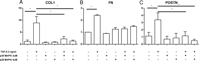 Cellular mRNA expression of fibrosis-related markers after exposure to TGF-β in the presence of p38 MAPK inhibitor. (A) COL1 expression was increased after exposure to TGF-β (2 ng/ml). Treatment with the p38 MAPK inhibitor significantly reduced the cellular expression of COL1. (B) The decrease in the expression of fibronectin was not significant after concomitant exposure to TGF-β and p38 MAPK inhibitor. (C) Expression of periostin was increased after exposure to TGF-β (2 ng/ml). Treatment with p38 MAPK inhibitor reduced TGF-β-induced periostin expression. (n = 6 per group for each experiment, and in vitro experiments were repeated 3 times to confirm reproducibility) *, P