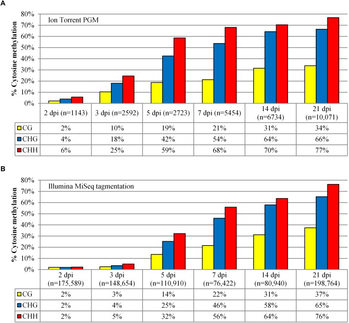 Methylation analysis comparison of the 35S-eGFP+hp time course experiment. (A) Methylation analysis was performed after the samples were sequenced using the Ion Torrent. A minimum length of 395 bp was selected with Phred scores of Q12 for 2 and 3 dpi, and Q22 for the remaining time points. (B) Methylation analysis on the same samples sequenced using the Illumina MiSeq tagmentation approach. A minimum length of 250 bp was selected with Phred scores of Q30 for all samples. n = number of reads used from one infiltrated leaf to build the profile after quality and length filtering.