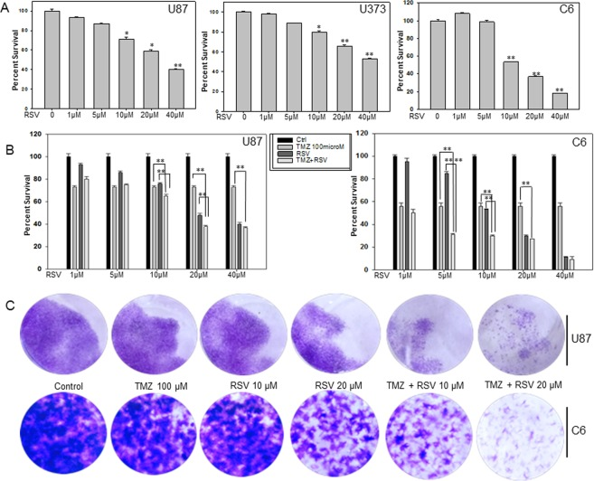 Roscovitine reduces glioma cell viability and potentiates the cytotoxic effects of TMZ on glioma cells in vitro . ( A ) Effect of RSV on cell viability in U87, U373 human glioma cell lines and C6, rat glioma cell line. The cells were treated with increasing concentrations of RSV for 72 h and cell viability was assessed by MTT assay. ( B ) Effect of TMZ and RSV co treatment on cell viability of U87 and C6 glioma cell lines. Cells were treated first with indicated concentrations of RSV followed by co-treatment with 100 µM TMZ. After 72 h incubation with the drugs cell viability was measured by MTT assay. ( C ) Long term colony formation assay for U87 and C6 cells after treatment with either TMZ, RSV or TMZ + RSV. The cells were treated with indicated concentrations of drug(s) for 72 h. After that medium was replaced with fresh DMEM supplemented with 10% FBS and cells were allowed to grow for 14 days with media change every third day. On 14 th day, colonies were fixed and visualized by staining with 0.05% crystal violet for 30 min. *p