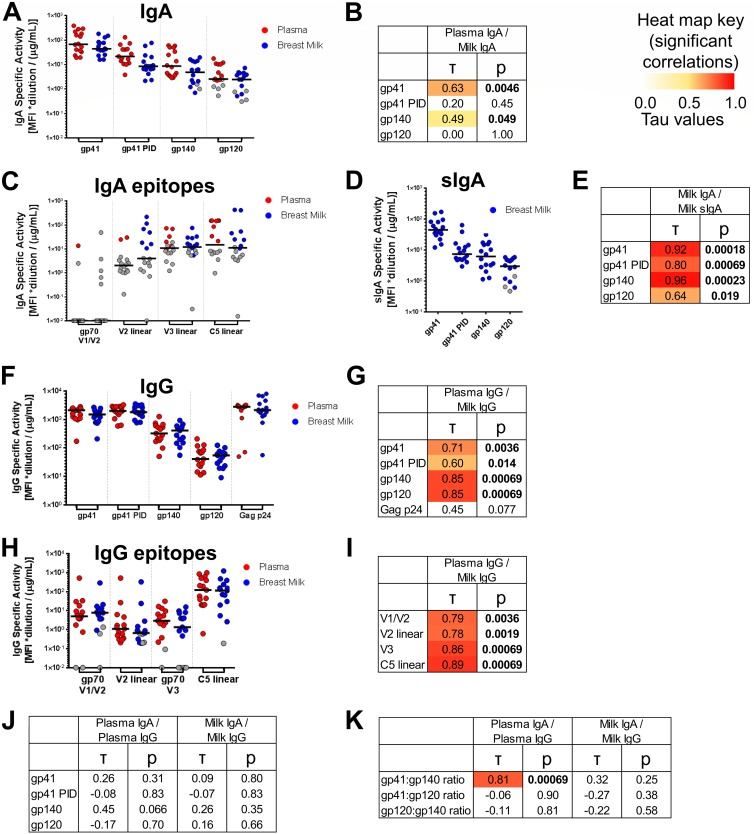 Env antigen specificities of milk IgG and IgA and plasma and milk IgAs do not correlate, while milk and plasma IgG Env antigen-specificities are strongly correlated. (A, C, D, F and H) For 16 HIV-1 + lactating women, milk and plasma samples were obtained, and IgA and IgG were purified from both sample types. For IgA (A) and sIgA (D), binding scores to gp41, gp41 PID, gp140, and gp120 antigens are shown (see Materials and Methods for antigens and calculation). For IgA, scores for binding to gp70 V1/V2, linear V2, linear V3, and linear C5 antigen subspecificities are also shown (C). For IgG, scores are shown for binding to Env gp41, gp41 PID, gp140, and gp120, as well as Gag p24 antigens (F), and to gp70 V1/V2, linear V2, gp70 V3, and linear C5 antigen subspecificities (H). Background-subtracted MFI values below 0 are shown with a value of 0.01. (B, E, G, I, J and K) Correlations between compartments for each antigen specificity or antigen specificity ratio. Kendall's tau values and corresponding corrected P values (see Materials and Methods) are reported. Boldface P values indicate significant correlations at a P value of