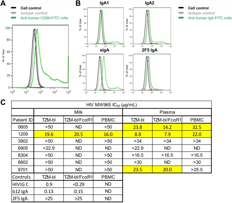 IgA-mediated tier 1 HIV-1 neutralization is not enhanced in FcαRI-expressing cells or peripheral blood mononuclear cells. (A) To gain insight into the role of CD89 in HIV infectivity and neutralization, the cDNAs for the human FcαRI and the γ chain of the FcεR were transduced into TZM-bl cells using lentiviral constructs. Specific monoclonal antibodies and flow cytometry detected surface expression of FcαRI on this new TZM-bl cell line. (B) Flow cytometry diagrams show the capability of the TZM-bl/FcαRI cell line to bind to human monomeric IgA1 and monomeric IgA2, human colostrum secretory IgA, and monoclonal 2F5 IgA. (C) To determine whether neutralization activity is enhanced in the presence of Fc alpha receptor 1 (FcαRI), we examined the neutralization IC 50 using TZM-bl cells transduced with FcαRI and also in human peripheral blood mononuclear cells (PBMCs). Milk and plasma IgAs were tested for six participants with a variety of neutralization phenotypes in TZM-bl cells. The positive controls HIVIG (clade C) and b12 IgA MAb and the negative-control 2F5 MAb (broadly neutralizing, but does not neutralize MW965) were also tested. ND, not done for the indicated sample. Neutralization was not enhanced in either FcαRI-transduced TZM-bl cells or in peripheral blood mononuclear cells.