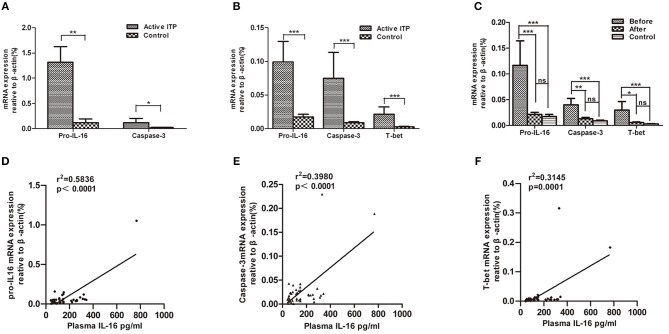 Relative mRNA expression of pro-IL16, caspase-3 and T-bet in ITP patients with active disease and healthy controls. mRNA expression in bone marrow mononuclear cells (BMMCs) and peripheral blood mononuclear cells (PBMCs) from ITP patients and healthy controls were quantified by real-time PCR. Furthermore, correlations between plasma IL-16 and mRNA expression levels of pro-IL16, caspase-3 and T-bet in active ITP patients were calculated. (A) Relative mRNA expression of pro-IL16, caspase-3 in ITP patients with active disease and healthy controls in BMMCs; *** P