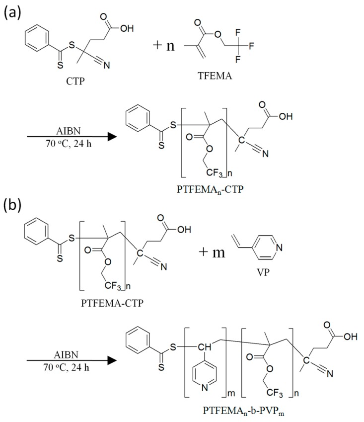 Schematic drawing of the mechanism for syntheses of ( a ) PTFEMA macro-RAFT agent (PTFEMA n -CTP) and ( b ) PTFEMA n - b -PVP m block copolymer. CTP: 4-Cyano-4-(phenylcarbonothioylthio)pentanoic acid; TFEMA: 2,2,2-Trifluoroethyl methacrylate; AIBN: 2,2′-Azobisisobutyronitrile; VP: 4-Vinyl pyridine; PTFEMA-b-PVP: Poly(2,2,2-trifluoroethyl methacrylate)- block -poly(4-vinyl pyridine). RAFT: Reversible addition-fragmentation chain transfer.