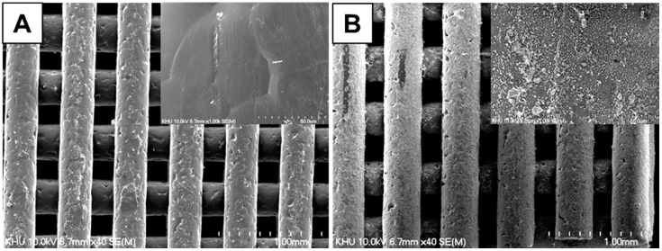 Scanning electron microscopy (SEM) images of <t>β-cyclodextrin</t> (βCD)-grafted hydroxyapatite (HAp)-coated poly(ɛ-caprolactone) (PCL) scaffolds ( A ) without and ( B ) with adamantane (AD) grafting.