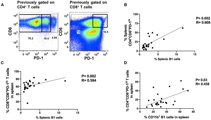 Splenic B1 cells correlate with T cell exhaustion during chronic SIV-infection. (A) Flow <t>cytometric</t> analysis of chronically SIV-infected splenic exhausted T cells by gating on CD4 + CD6 + PD-1 + and CD8 + CD6 + PD-1 + respectively. Data are representative of 25 macaques. For CD4 + T cells: CD6 + PD-1 − (non-exhausted), CD6 + PD-1 lo (exhausted), and CD6 + PD-1 hi (terminally exhausted). For CD8 + T cells: CD6 + PD-1 − (non-exhausted) and CD6 + PD-1 + (exhausted). (B) The correlation of splenic B1 cells with terminally exhausted CD4 + T cells. (C) The correlation of splenic B1 cells with exhausted splenic CD8 + T cells. (D) The correlation of splenic CD11b + B1 cells with terminally exhausted CD4 + T cells. Data in (B–D) are from 25 macaques. For statistical analysis, non-parametric Spearman rank correlations were performed. All tests were two-tailed.