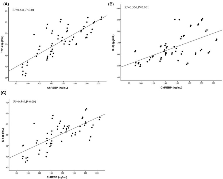 Correlation between ChREBP and pro-inflammatory cytokines Correlation analysis between ChREBP and TNFα ( A ), IL-1β ( B ), and IL-6 ( C ).