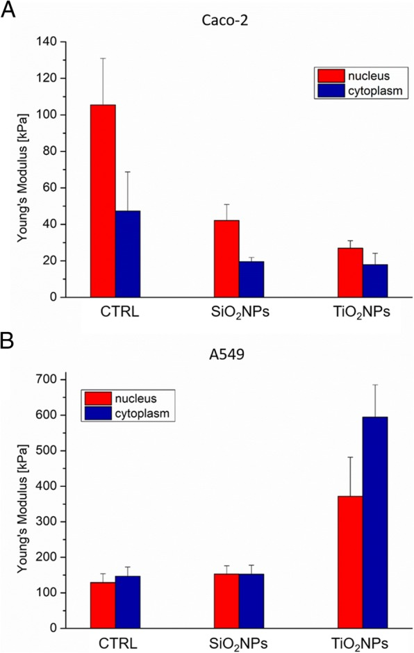 Young's modulus values expressed in kPa, calculated from the nuclear region and the cytoskeletal area of Caco-2 ( a ) and A549 ( b ) cell lines after a treatment to 45 μg/ml of SiO 2 NPs and TiO 2 NPs for 72 h