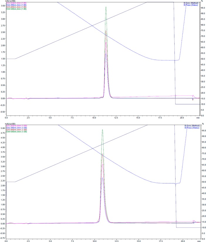 Analytical <t>HPLC</t> of purified <t>mSAM.</t> Gradient of 50–100% acetonitrile. RT: 10.7 min (lower panel), 11.5 min (upper panel). Absorbances at 450 nm (coumarin 343), 540 nm (TAMRA), 254 nm, and 280 nm are shown. Both 5-(6-)TAMRA isomers are shown separately (upper and lower panel).
