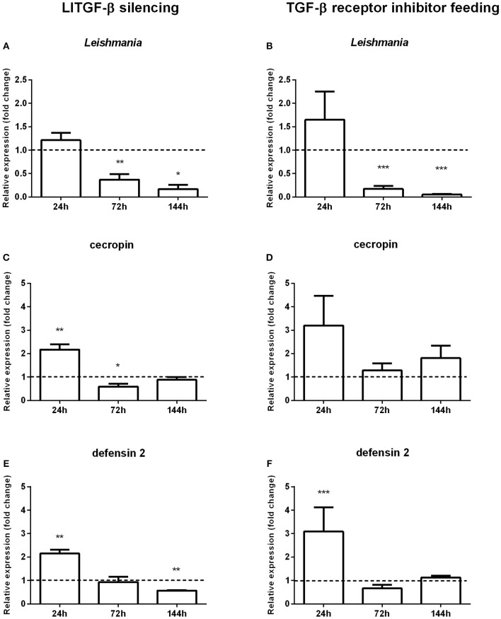 Gene expression in sand flies infected by L. i. chagasi after abrogation of the LlTGF-β signaling pathway. (A,C,E) Gene expression of LlTGF-β silenced insects. (B,D,F) Gene expression of insects fed with TGF-β receptor inhibitor. (A,B) Quantification of L. i. chagasi in sand flies. (C,D) Relative expression of cecropin. (E,F) Relative expression of defensin 2. Samples were collected at 24, 72, and 144 h post infection. Dotted lines indicate gene expression of β-galactosidase dsRNA injected (A,C,E) or DMSO fed flies (B,D,F) control groups, or. Both test and control groups were infected by L. i. chagasi . Comparisons were done between silenced vs. non-silenced, or inhibitor treated vs. non-treated sand fly groups. Bars represent mean with standard error of fold change in gene expression relative to control groups of 3 independent experiments. Significant differences were evaluated by t -test and Mann–Whitney post-test (* p