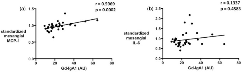 Correlation of serum Gd-IgA1 with ( a ) MCP-1 and ( b ) <t>IL-6</t> from HMCs treated with IgA1 isolates from patients.