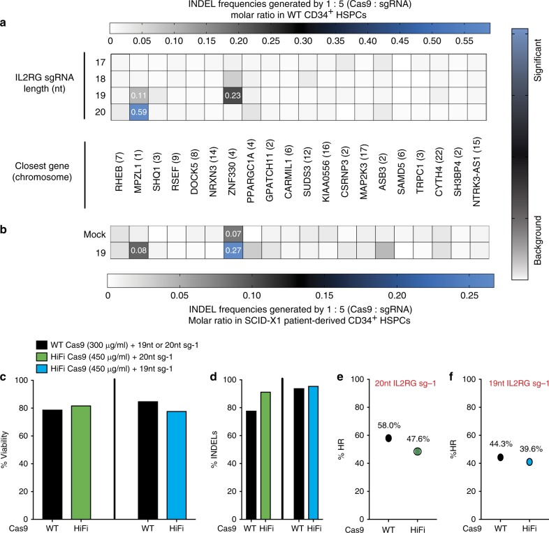 Genome specificity of IL2RG sgRNA guide. a Heat map of on-target INDEL frequencies quantied by NexGen-Seq at COSMID identified putative on-target locations from healthy CD34 + HSPCs. Levels of NHEJ induced by 20 nt IL2RG sgRNA and truncated 19 nt, 18 nt and 17 nt pre-complexed with WT Cas9 protein at 5:1 molar ratio. b Heat map as in ( a ) of on-target INDEL frequencies derived from 19 nt IL2RG sg-1 in the genome of CD34 + HSPCs SCID-X1 patient 1 derived cells. c Percent viability at day 4 of SCID-X1 patient-derived CD34 + HSPCs nucleofected with either wild-type (WT) or high-fidelity (HiFi) SpCas9 protein pre-complexed with either the 20 nt or the 19 nt IL2RG sg-1 ( n = 1). d Percent INDELs measured by TIDE at day 4 in cells as in ( c ) using WT or HiFi Cas9 protein pre-complexed with the 20 nt IL2RG sg-1 (green bars) or 19 nt IL2RG sg-1 (blue bars). e Percent IL2RG cDNA targeting (% HR) as measured by ddPCR at day 4 in cells as in ( c ) generated by either WT or HiFi Cas9 protein pre-complexed with the 20 nt IL2RG sg-1 or ( f ) 19 nt IL2RG sg-1. Source data are available in the Source Data file