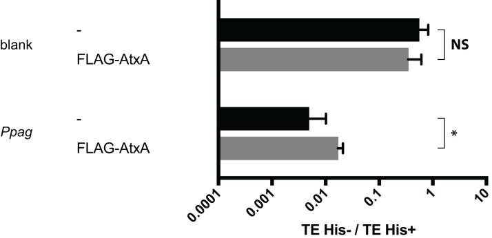 Recovery from suppression by Ppag without omega factor. Interaction of the FLAG-AtxA with the upstream region of pagA gene was compared with that of an empty vector. A <t>pSTV28</t> vector expressing no bait protein was used as a control (-). *Indicates p