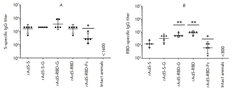 Glycoprotein-specific IgG titers in the blood serum of immunized animals. The figure shows IgG titers: ( A ) specific to the MERS-CoV S glycoprotein and ( B ) specific to the RBD. Scatter plots show the geometric mean titer (GMT) and 95% confidence interval (CI) for each group (n = 5 mice/group). Asterisks indicate significant intergroup differences in IgG titers. * p