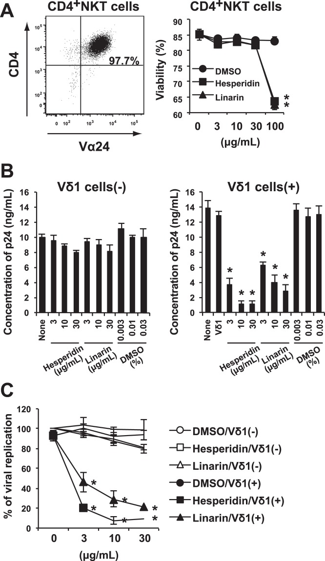 Effects of hesperidin and linarin on the replication of R5-type of HIV-1 in CD4 + NKT cells through Vδ1 + T cells. ( A ) CD4 + NKT cells induced from PBMCs by using α-GalCer (left). Viability of CD4 + NKT cells cultured with hesperidin, linarin or DMSO (right). ( B ) As described in Methods, CD4 + NKT cells were infected with R5-tropic NL(AD8) HIV-1. Then, HIV-1-infected CD4 + NKT cells were cultured in the presence of 3, 10, or 30 μg/mL hesperidin or linarin or 0.003, 0.01 or 0.03% DMSO with (right)/without (left) the resting Vδ1 + T cells for 3 days. HIV-1 p24 concentration of the culture supernatant was measured by using specific ELISA kit. ( C ) The percentage of HIV-1 viral replication was also shown. The data are expressed as the mean + SEM of three independent experiments. * P