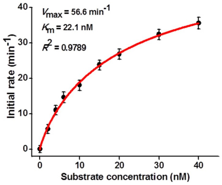 Dependence of initial velocity ( V ) on different concentrations of hairpin substrate. The 0.1 U/µL hAAG and 0.3 U/µL APE1 were used in this experiment. The time for hAAG-induced 2′-deoxyinosine excision reaction was 5 min. Error bars show the standard deviation of three experiments.