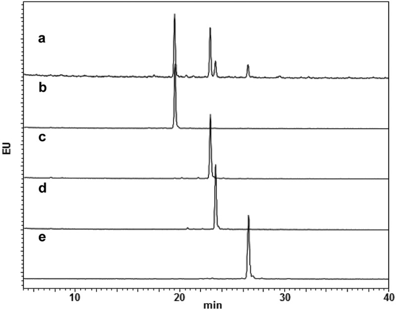 Glycan profiles of mAbs with homogeneous glycans. Glycan profiles of commercially available anti-CD20 mAb (a) and glycoengineered G0F mAb (b), G1aF mAb (c), G1bF mAb (d), and G2F mAb (e). The glycan profiles were obtained using HPLC analysis of 2-AB-labeled glycans.