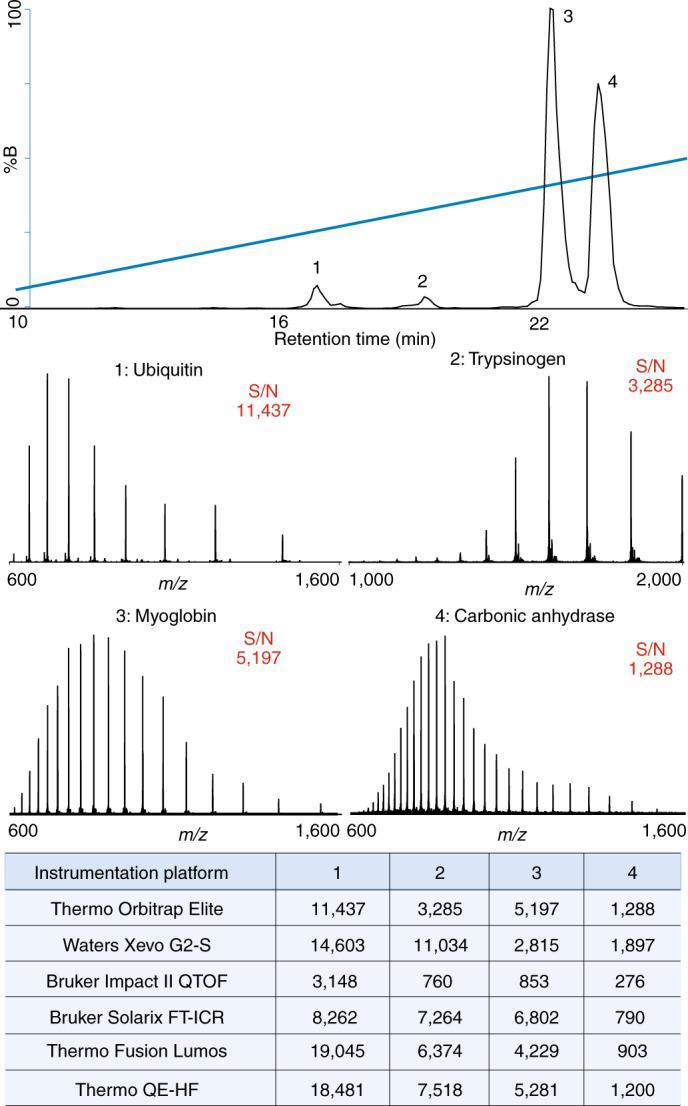 LC-MS of protein standard mixture prepared following Protocol 5a and separated on a Dionex UPLC with a Thermo Orbitrap Elite system using PLRP-S stationary phase. Final concentrations of each protein loaded onto the column were 0.14 pmol ubiquitin, 0.49 pmol trypsinogen, 1.09 pmol myoglobin and 0.64 pmol carbonic anhydrase (top). Summary of S/N values calculated for each protein on all instrumentation platforms using the given SOP (bottom) including Dionex Ultimate 3000–Thermo Orbitrap Elite, Waters Acquity–Xevo G2-S QTOF, Waters nanoAcquity–Bruker Impact II QTOF, Waters nanoAcquity–Bruker SolariX FT-ICR, Dionex Ultimate 3000–Thermo Fusion Lumos, and Dionex Ultimate 3000–Thermo QE-HF. As described, S/N calculations differ per manufacturer and do not reflect absolute performance.