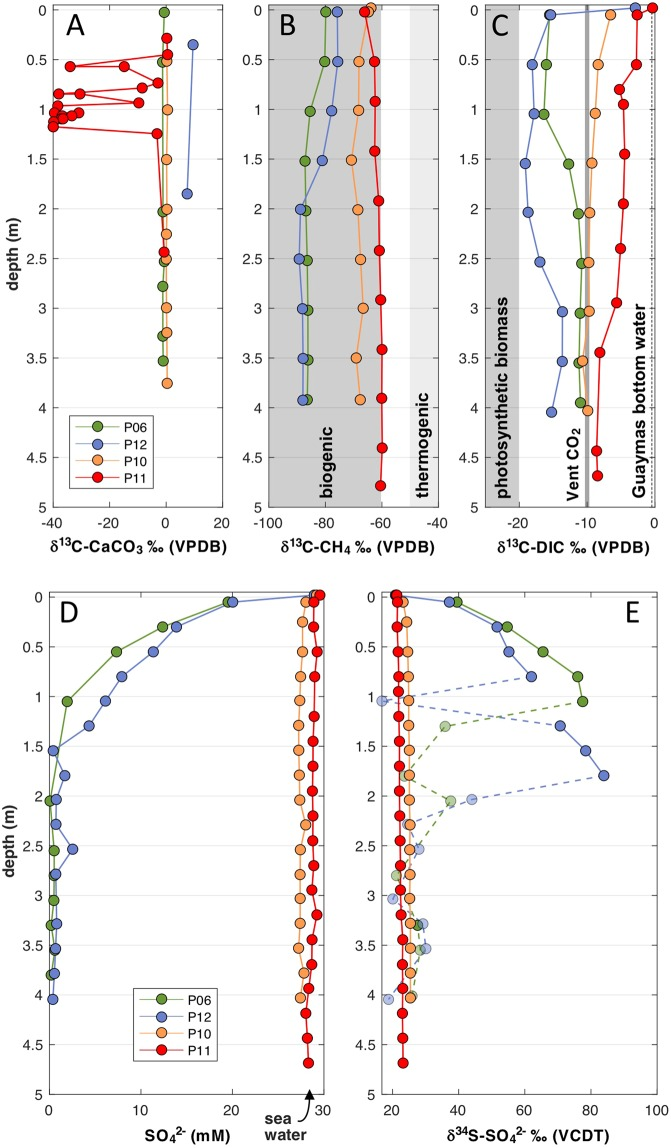 Geochemical profiles of piston-cored sediments. The plots are contrasting the geochemical profiles of Ringvent core P11 against those from nearby control core P10 and Sonora Margin cores P5/6 and P12. ( A ) δ 13 C-isotopic composition for carbonate nodules and sedimentary carbonate. Porewater δ 13 C-isotopic profiles for ( B ) methane and ( C ) DIC. The range of biogenic methane is based on Guaymas Basin sediment data 31 , 32 ; the range for thermogenic methane is based on δ 13 C-isotopic values near −42‰ for surficial hydrothermal sediments 19 , −43.2 to −50.8‰ in hydrothermal fluid 33 , and −40 to −44‰ in hydrothermal DSDP core 477 30 . ( D ) Porewater sulfate concentrations determined by ion chromatography. ( E ) δ 34 S profiles for porewater sulfate. Complete isotopic data for solid-phase carbonates are tabulated in Supplementary Data 3 . Porewater DIC and methane data are tabulated in Supplementary Data 5A,B , and sulfate and sulfide data (concentrations only for sulfide) are tabulated in Supplementary Data 5C,D .